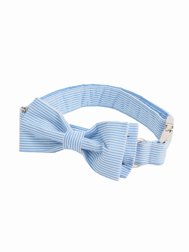 Fashionable blue white striped dog bow tie