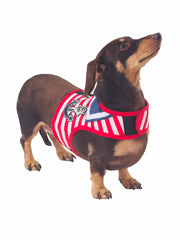 High Seas Dog Harness and Lead Set