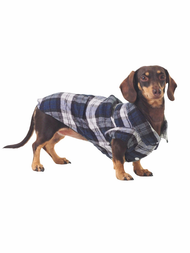 Trendy hipster plaid dog shirt