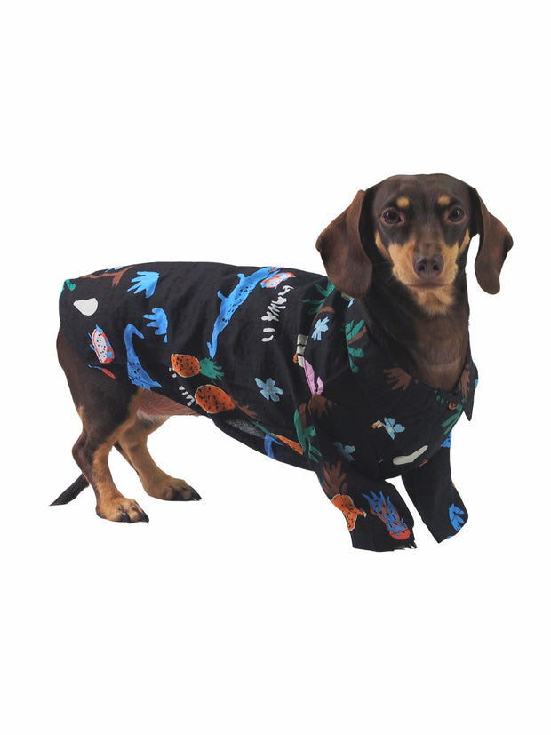 Dog apparel boutique