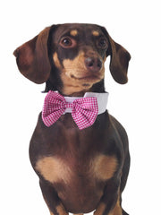 Cheap pink plaid dog bow tie collar