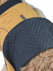 Affordable online winter dog jackets, coats and apparel