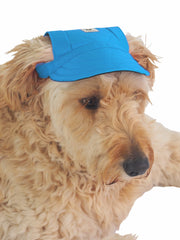 Fashionable adjustable dog cap in blue
