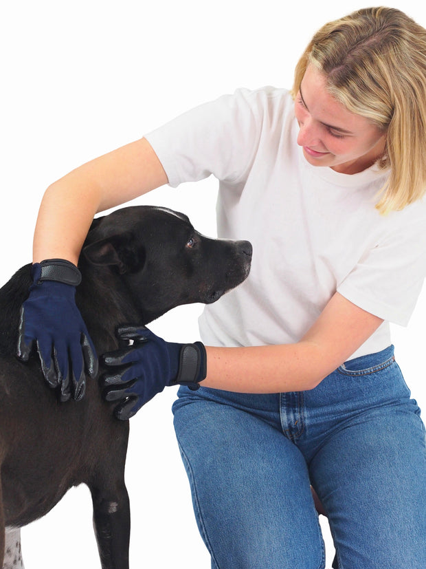 Professional Dog Grooming Glove