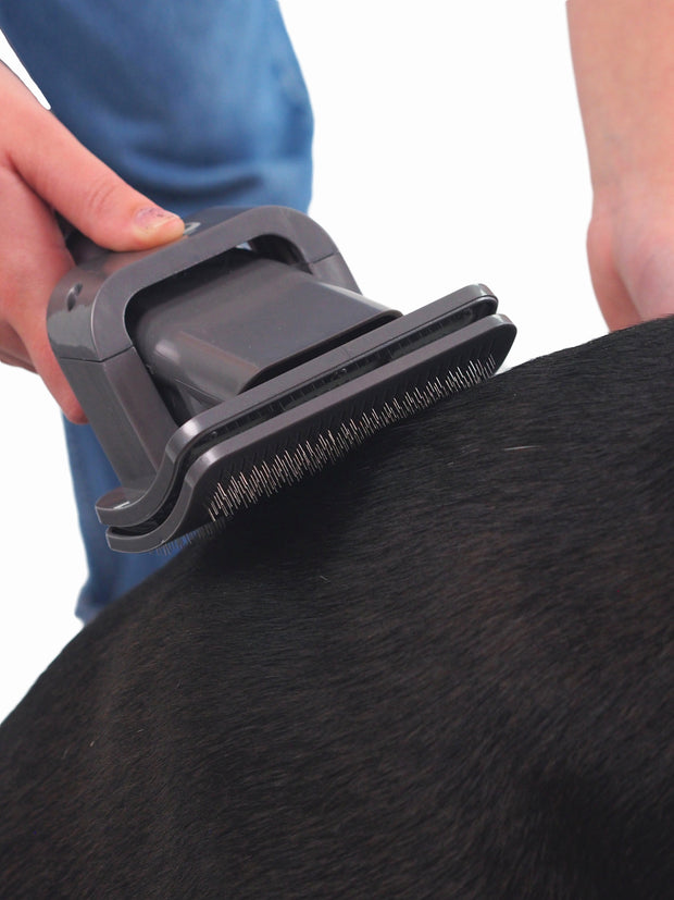 Dyson vacuum dog grooming attachment