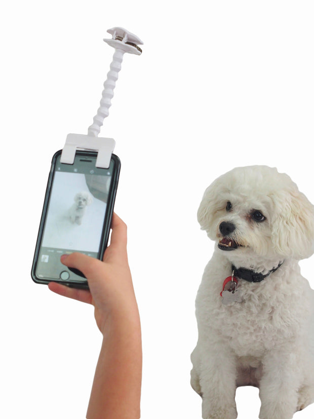 Affordable online dog lovers gifts Dog selfie stick