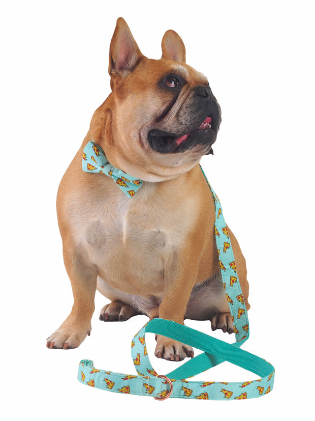Matching green Pizza Slice Dog Bow Tie and Lead Set