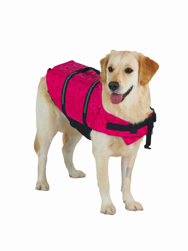 High visibility dog lifejacket for summer