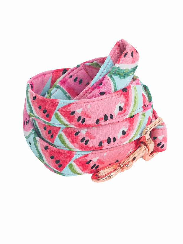Affordable Online Juicy Watermelon Dog Lead