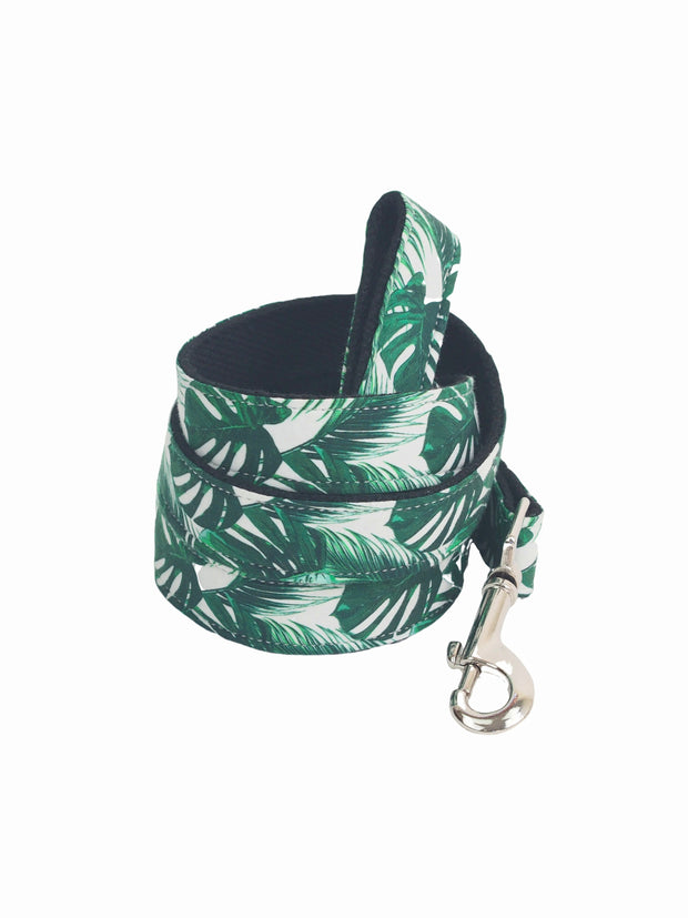 Fancy dog lead for sale online