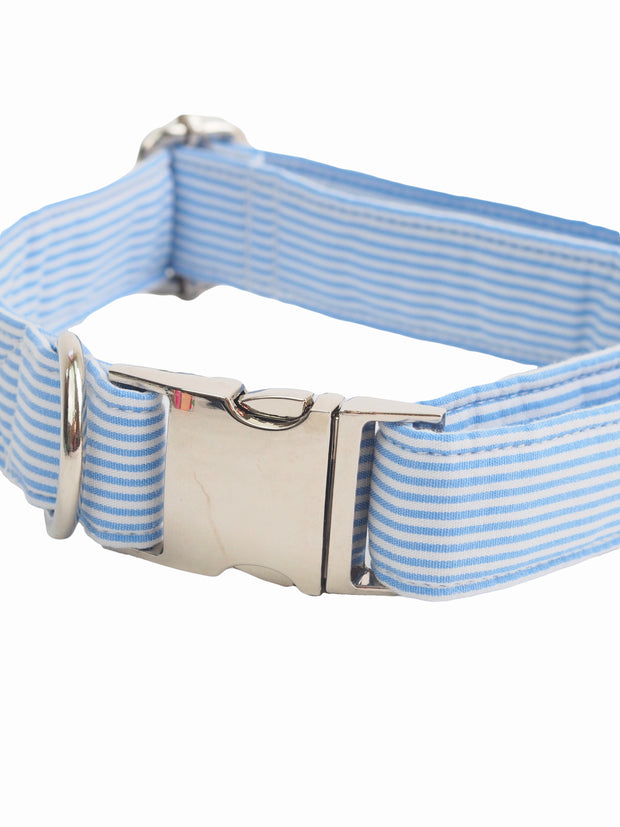 Affordable online dog collar