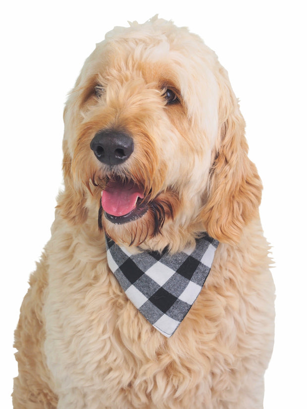 100% cotton dog bandana in black and white plaid