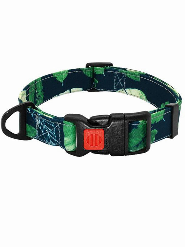 forest greens nylon dog collar