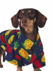 Fashionable summer and spring Hawaiian dog shirt