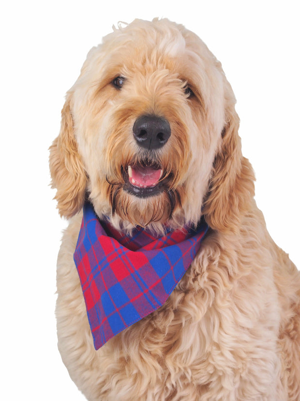 Cotton knotted dog bandana in red and blue