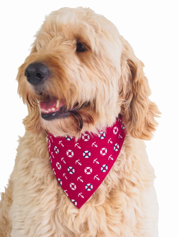 Nautical themed clip dog bandana