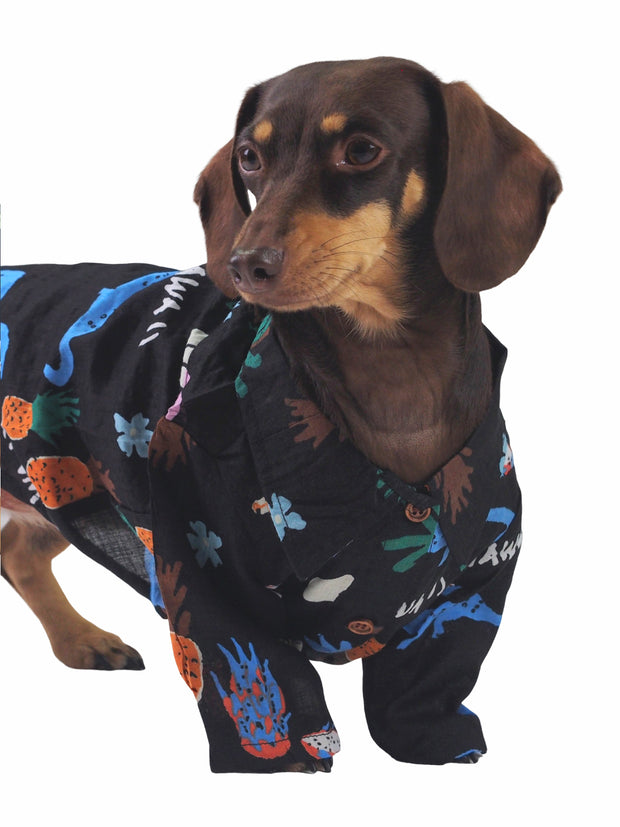 Affordable online dog apparel and hawaiian shirt