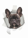 3D Dog Wall Sticker French Bulldog