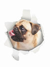 Cool 3D pug wall sticker