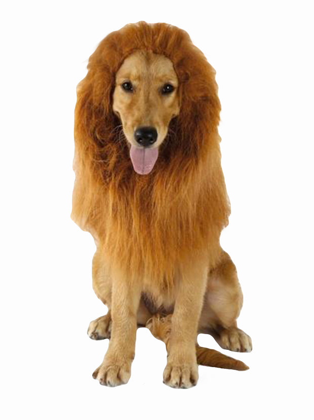 Lion mane without ears dog costume