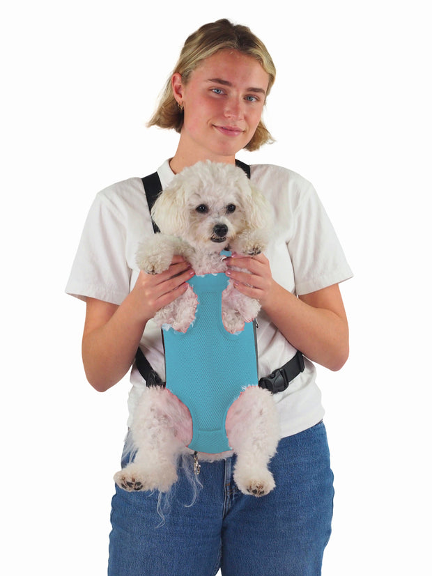Cool small puppy dog front carrier bag legs out