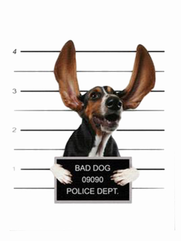 Dog mug shot with large ears canvas art print