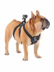 Shoot Action Gopro POV Dog Harness