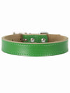 green genuine leather dog collar