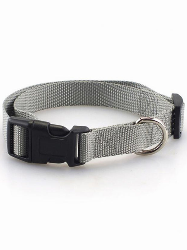 grey adjustable nylon dog collar