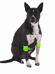 Hi-Vis Reflective Dog Leg Bands