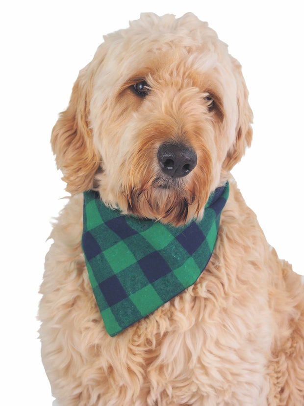 Cute cotton dog bandana in dark green plaid