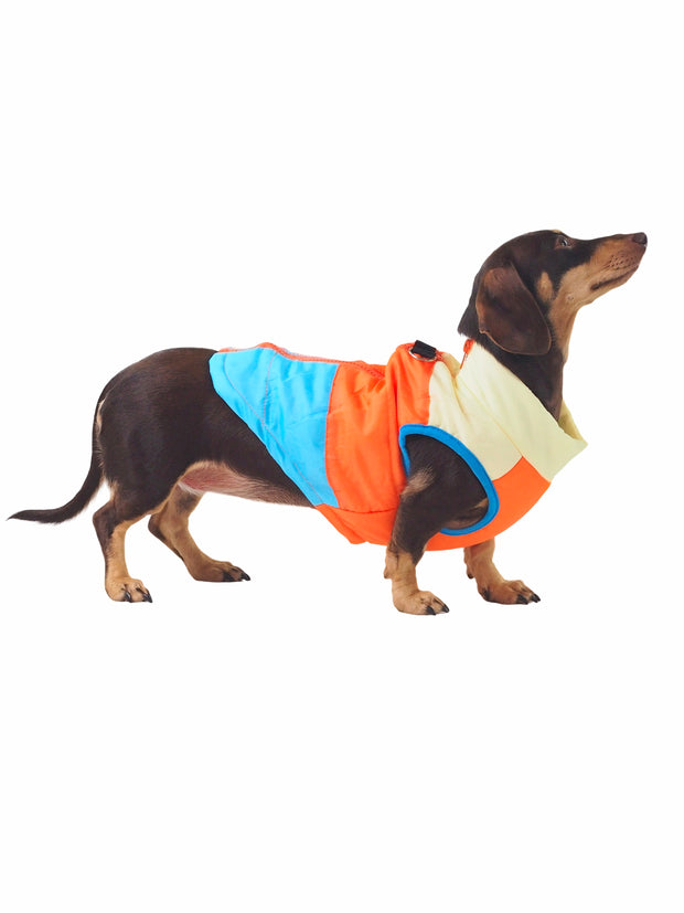 80's Retro Padded Dog Puffer Jacket