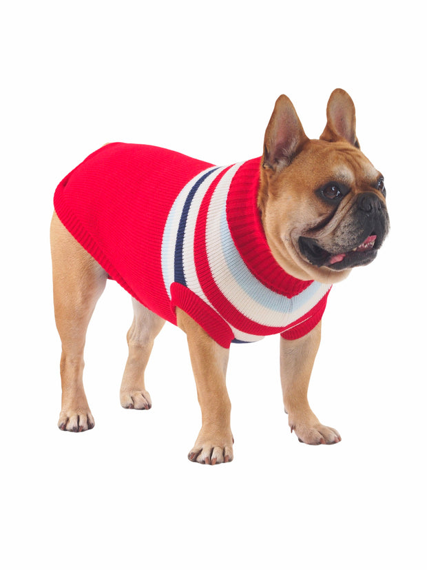 Varsity Smart Striped Dog Sweater Jumper
