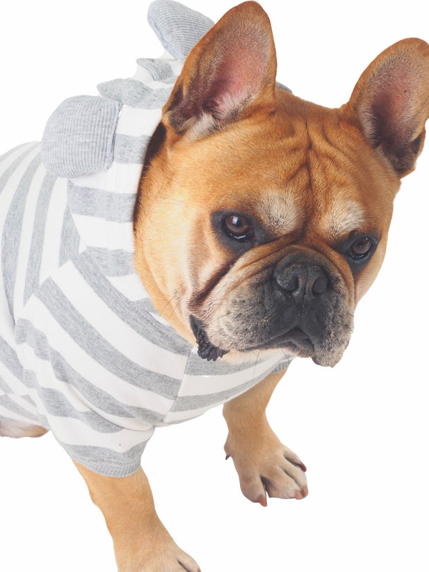 Affordable online striped dog jumpers, sweaters and hoodies