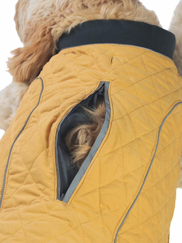 High quality adjustable dog jacket and coat with lead hole