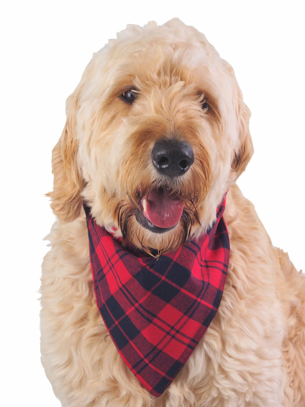 Reversible cotton dog bandana in red and black plaid
