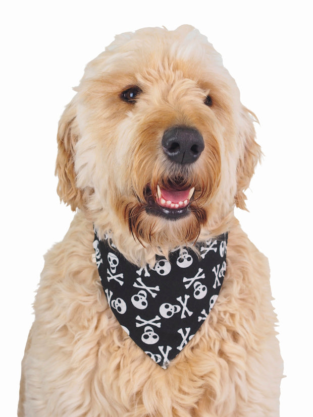 Affordable online dog bandana pirate pattern