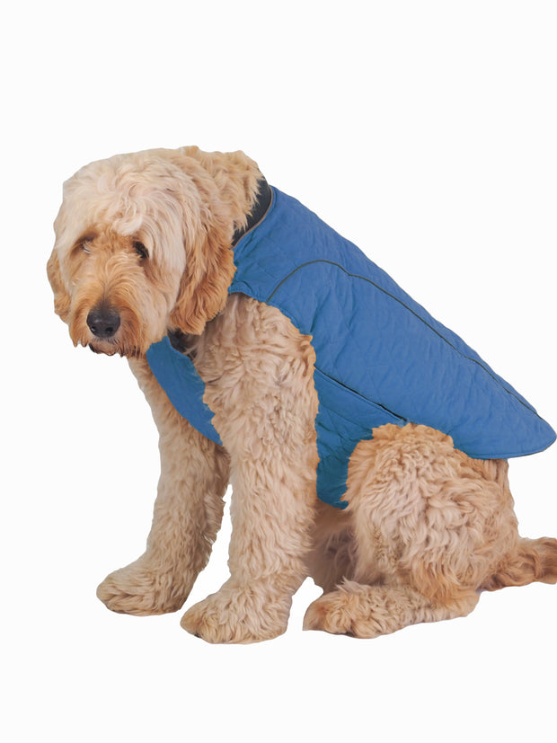 Fashionable online large dog jackets, coats and apparel