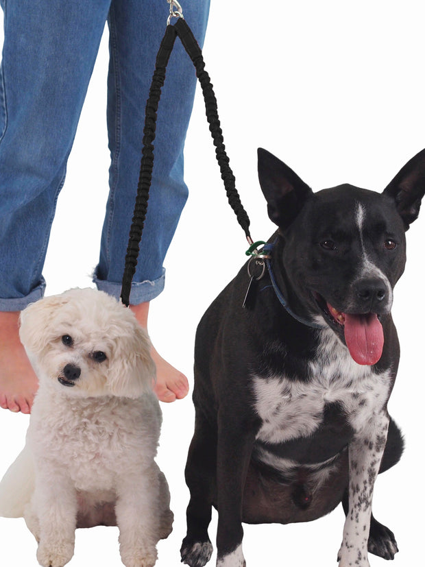Nylon dog lead coupler for two dogs
