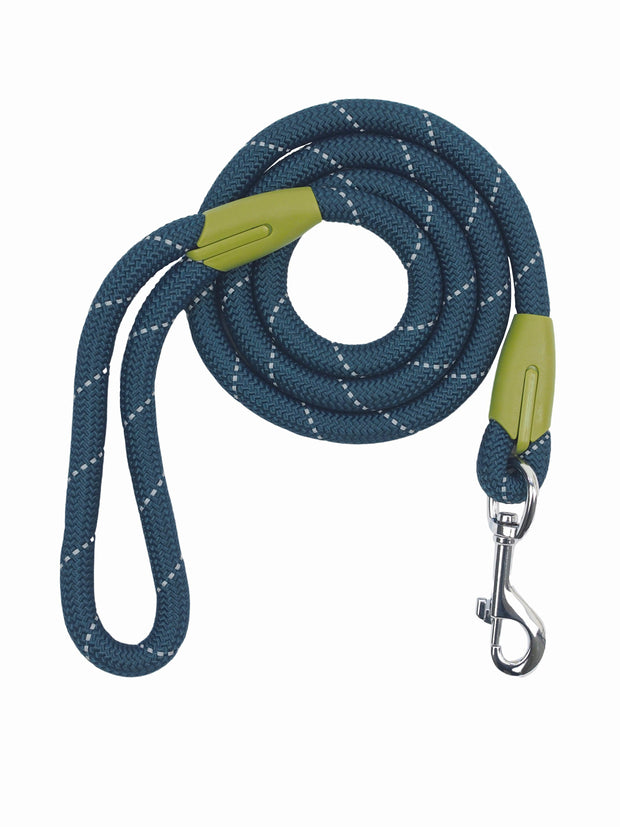 Classic Durable Nylon Dog Lead