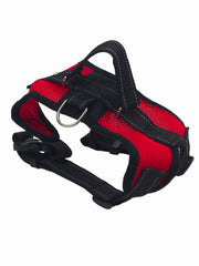 Affordable online dog muzzles and mesh harnesses