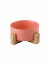 red modern ceramic dog bowl