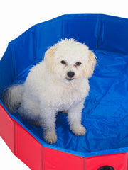Pop up dog paddling pool and bath