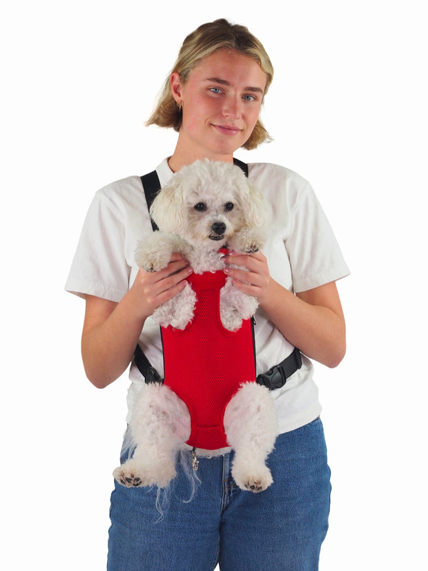 Small puppy dog mesh carrier bag