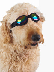 Protective dog goggles for summer and dust