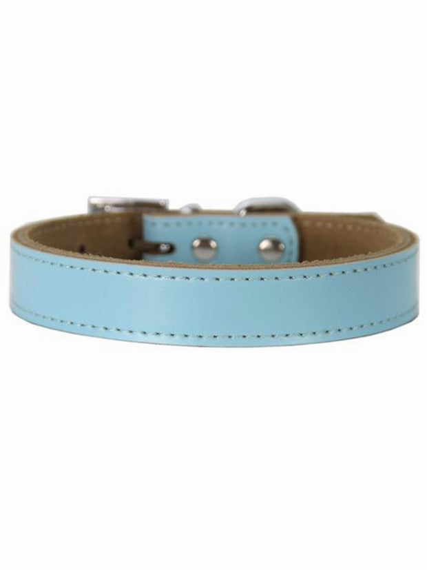 quality blue leather dog collar