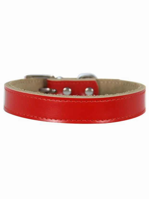 red leather dog collar online