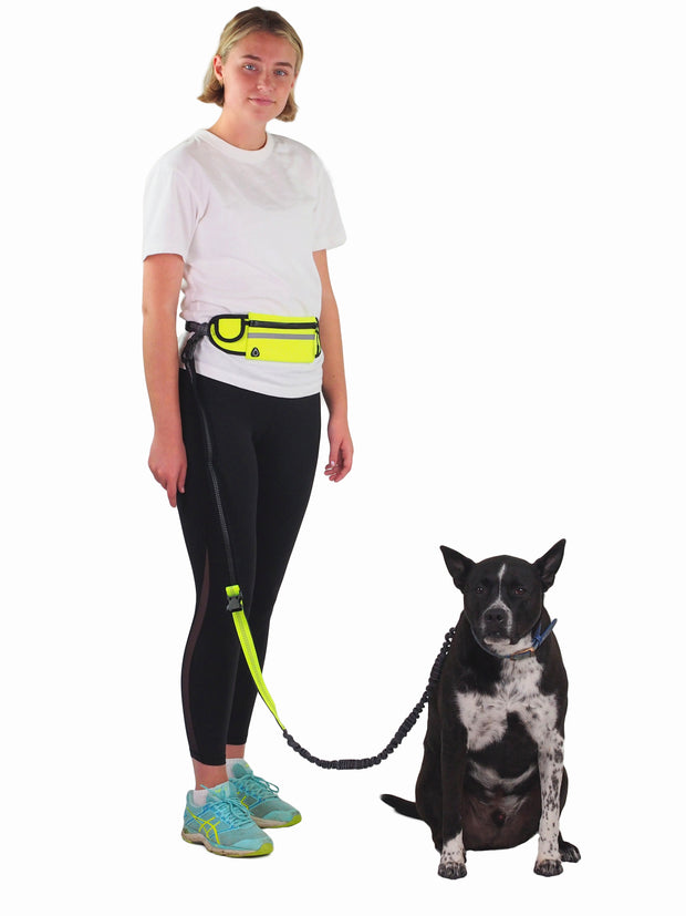 Free Runner Dog Lead and Belt