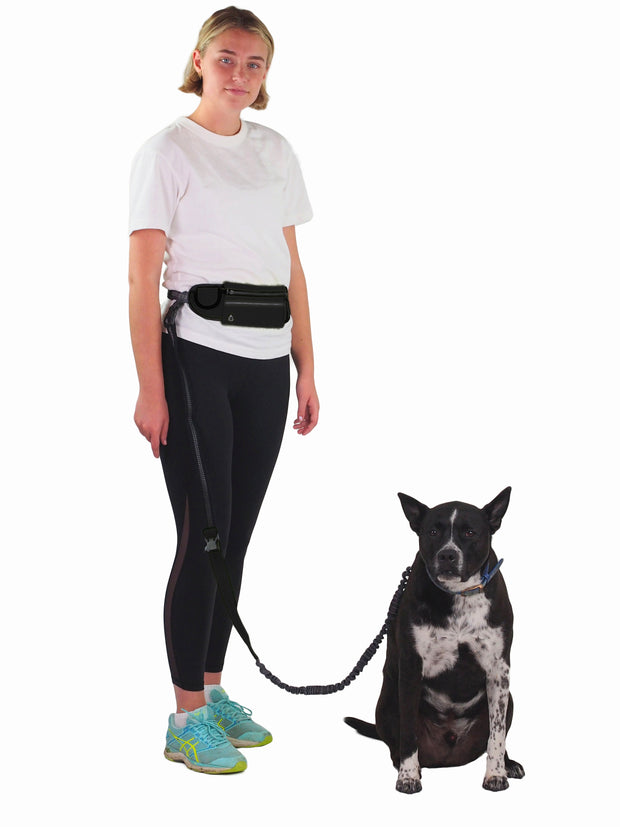 No hands dog lead with matching belt for running
