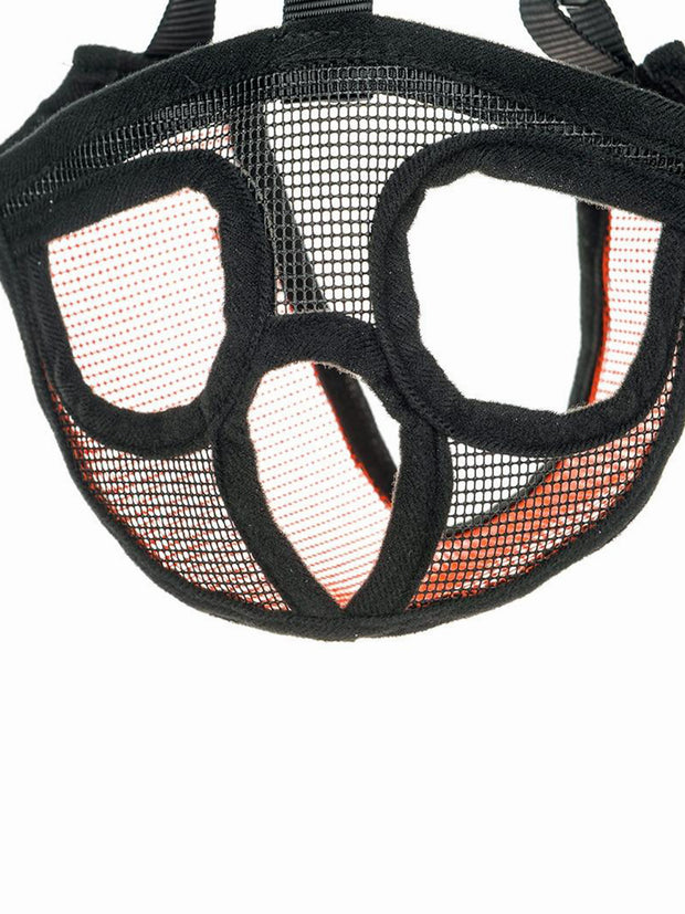 short snouted dog muzzle